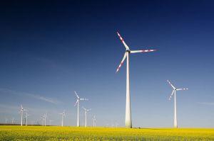 ODF Energía, Energía Renovable